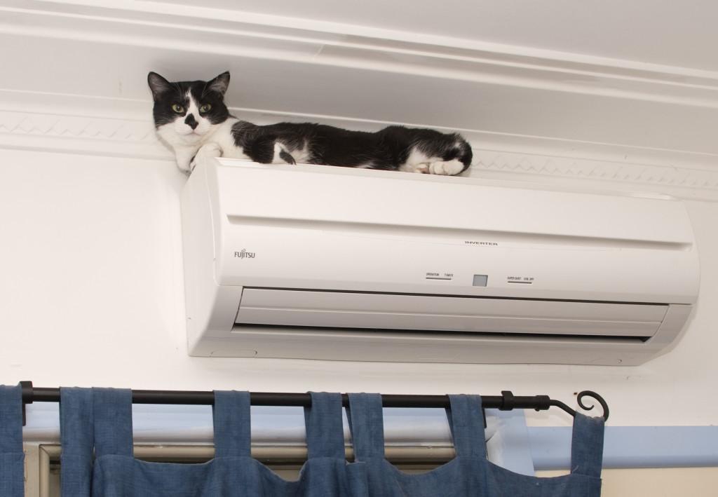инверторные кондиционеры преимущества кошка